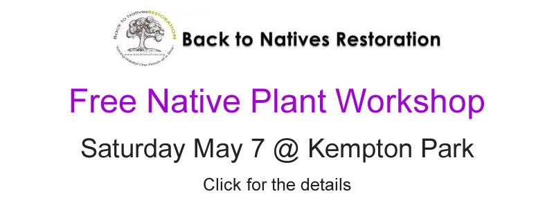 Rossmoor's Kempton Park Workshop by Back To Natives Restoration