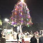 2020 Rossmoor Tree Lighting at Rush Park